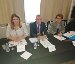 Participation of SAI Representatives in the Expert Meeting in Sarajevo